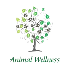 Animal Wellness of Skaneateles